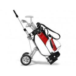 carro de golf con bolis