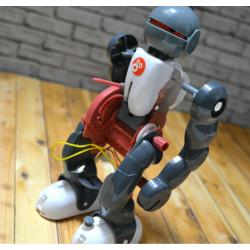 Imagén: ROBOT PIRUETO: CONSTRUYE UN ROBOT CAPAZ DE REALIZAR MOVIMIENTOS