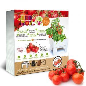huerto urbano tomate cherry